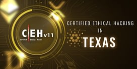 Ethical Hacking in Texas